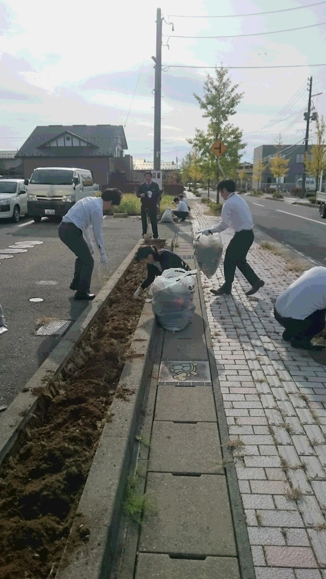 花壇整備10月4日-5.JPG